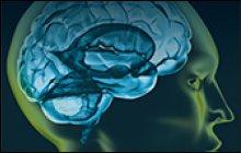 Computational Intelligence and Neuroscience
