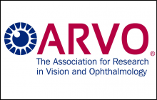 Association for Research in Vision and Ophthalmology