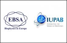 Logo_IUPAB_ESBA