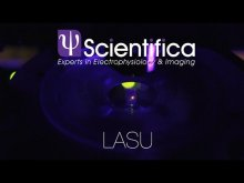 LASU – Optogenetics, photostimulation and uncaging system