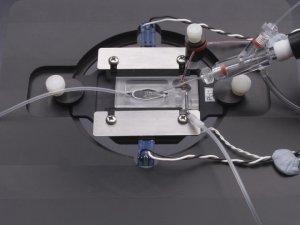 Warner Instrument Products