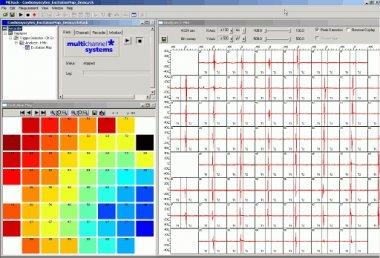 Cardiac Signals