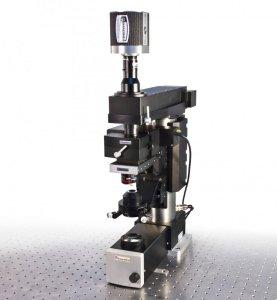 Multiphoton Imaging System
